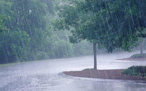 Semaine de reprise pluvieuse…